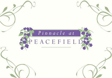 Pinnacle-at-Peacefield Leasing